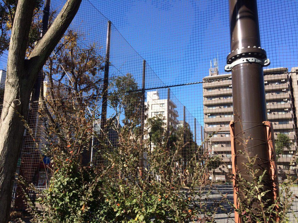 16.戸部公園のネット大幅かさ上げに成功しました。都心部の運動公園には高いネットが必要です。横浜市会議員しみず富雄